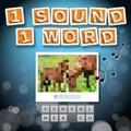 1 Sound 1 Wort